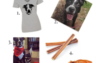 Last Minute Gift Ideas for Dog Lovers