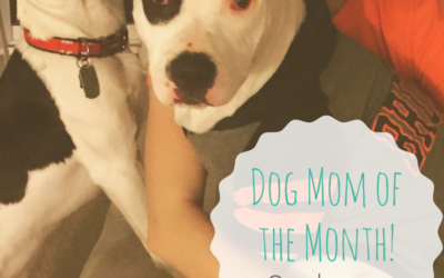 Dog Mom of the Month: Sydney