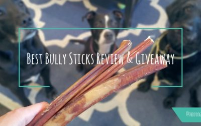 Best Bully Sticks Review AND Giveaway