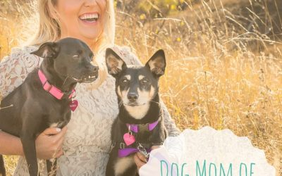 Dog Mom of the Month – Clare S.