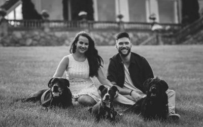 We did a Photo Shoot with the Dogs, Here's Why + Tips