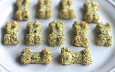 Spinach, Apple & Carrot Homemade Dog Treats
