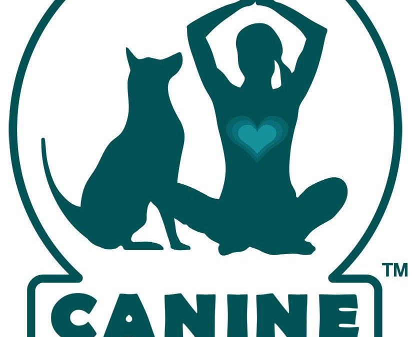 10/8 Canine Flow Retreat in Boulder, CO