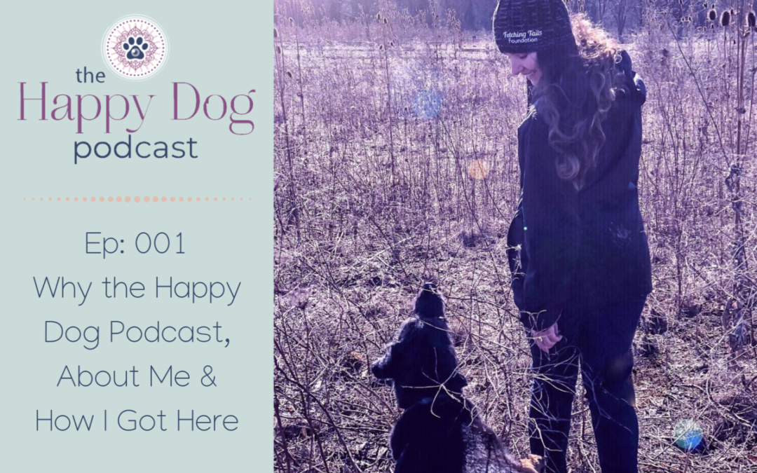 Ep 001: Why the Happy Dog Podcast, About Me & How I Got Here
