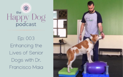 Ep 003: Enhancing the Lives of Senior Dogs with Dr. Francisco Maia