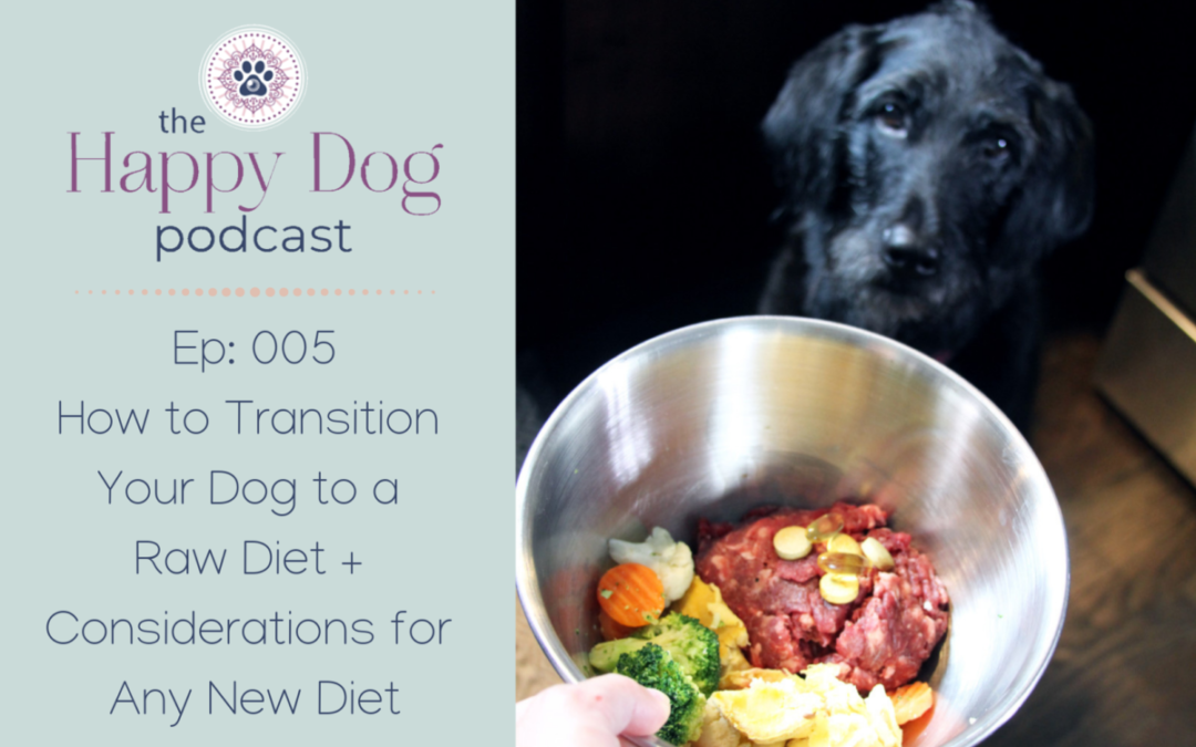 Ep: 005 How to Transition Your Dog to a Raw Diet + Considerations for Any New Diet