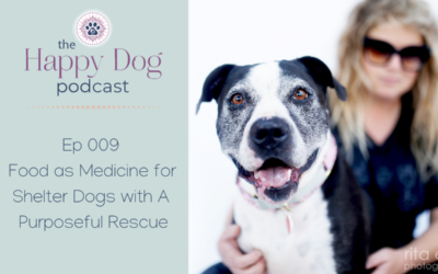 Ep 009: Food as Medicine for Shelter Dogs with A Purposeful Rescue