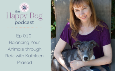 Ep 010  Balancing Your Animals through Reiki with Kathleen Prasad