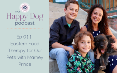 Ep 011 Eastern Food Therapy for Our Pets with Marney Prince