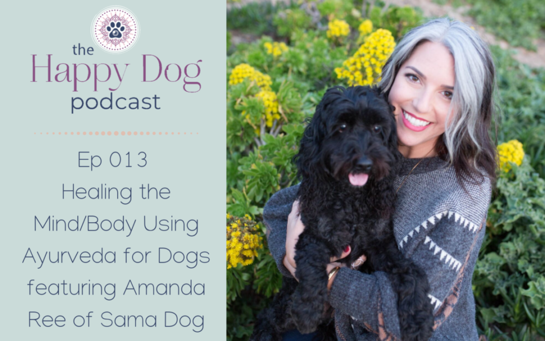Ep 013 Healing the Mind/Body Using Ayurveda for Dogs featuring Amanda Ree of Sama Dog