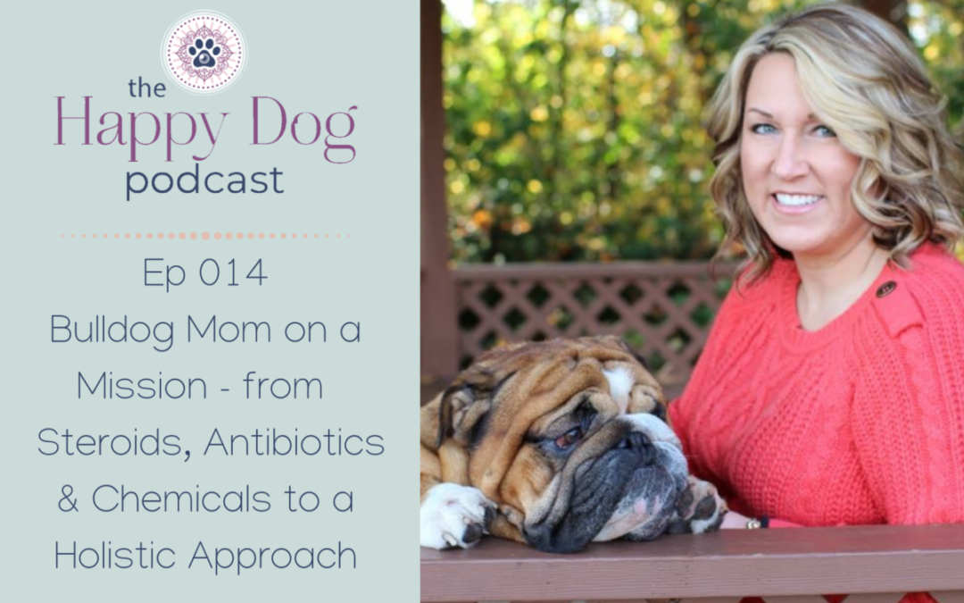 Ep 014 Bulldog Mom on a Mission – from Steroids, Antibiotics & Chemicals to a Holistic Approach
