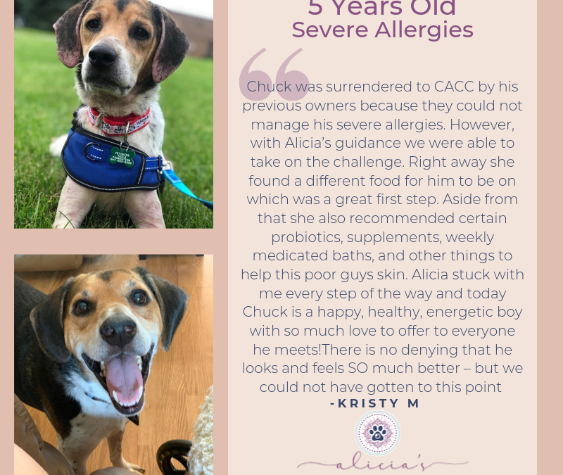 Testimonial: Chuck's Allergy Diet