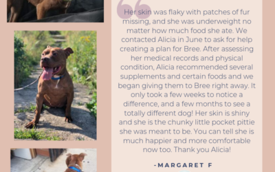 Testimonial: Bree's Allergy Diet