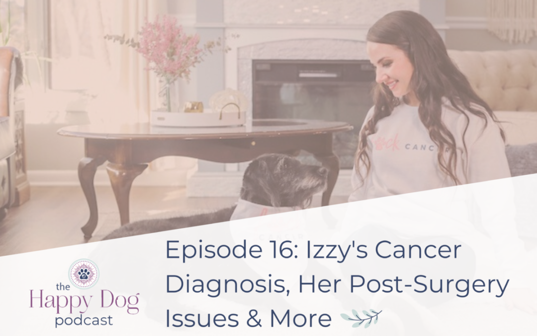 Ep 016 Izzy's Cancer Diagnosis, Her Post-Surgery Issues & More