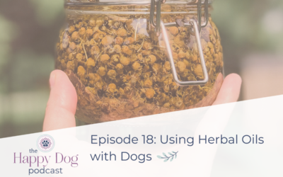Ep 018 Tip Episode:Using Herbal Oils with Dogs